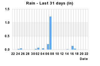 Rainfall Past 31 days